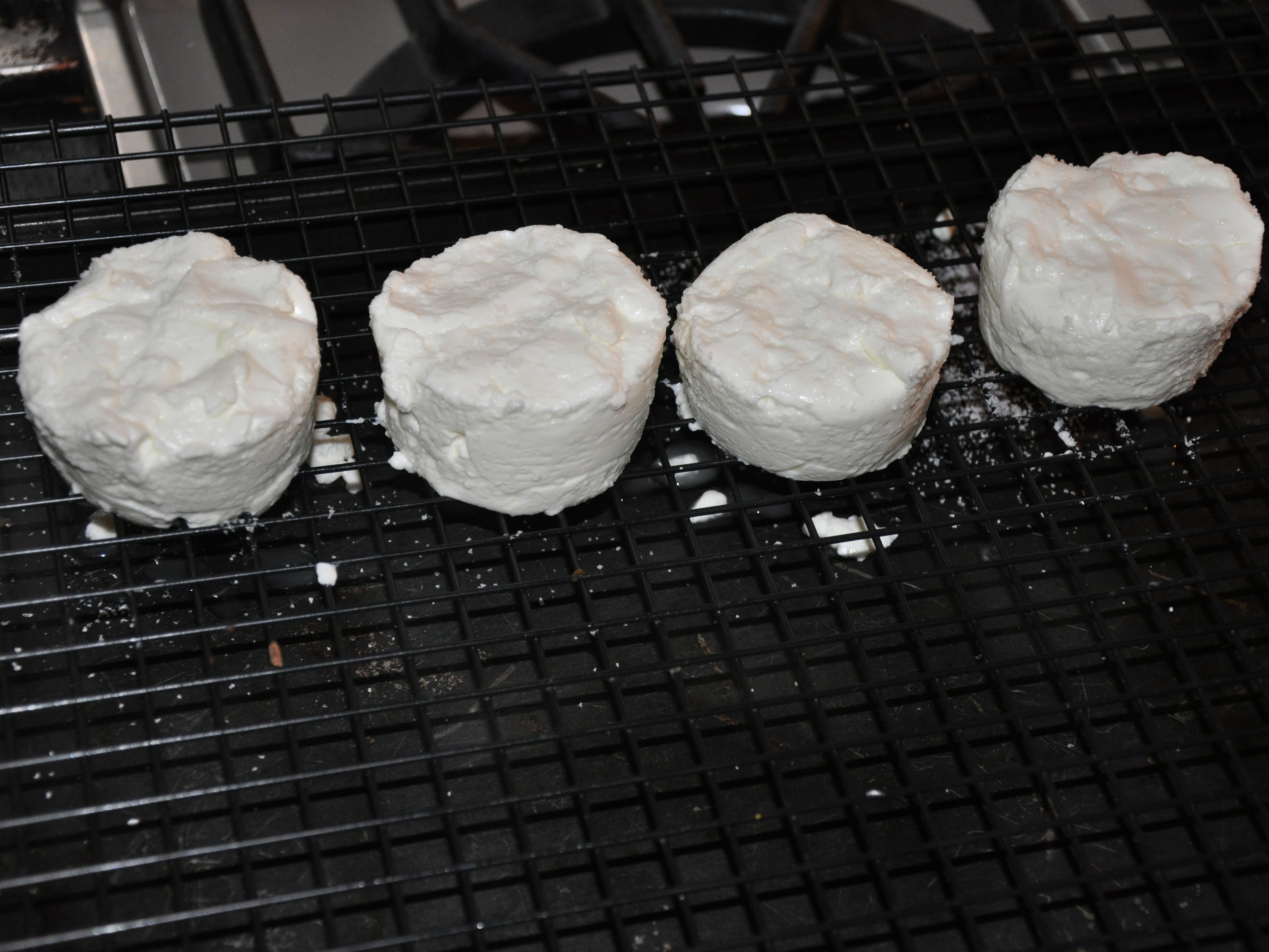 New Project: GoatCheese