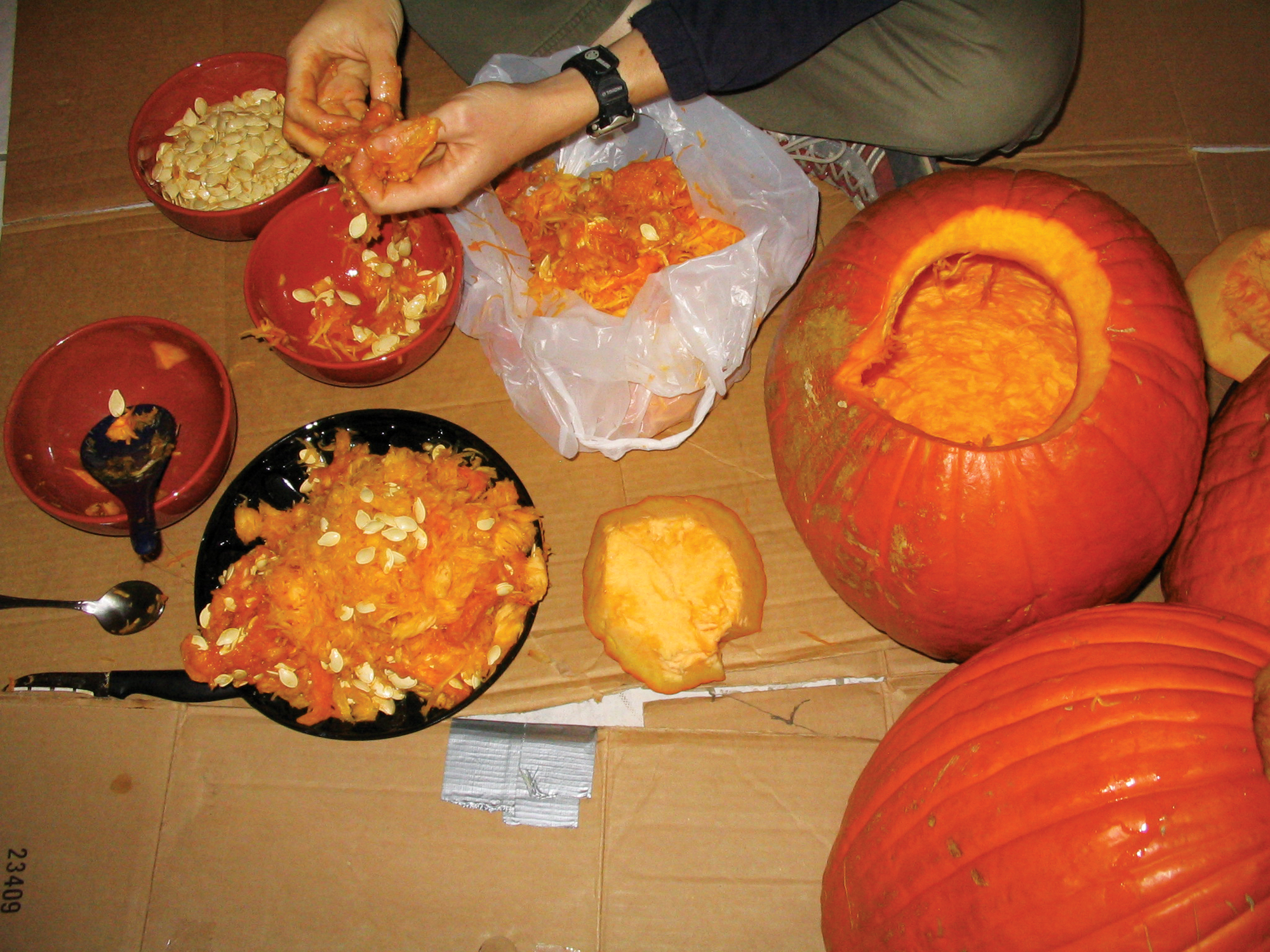 New Project: Roasted Pumpkin Guts