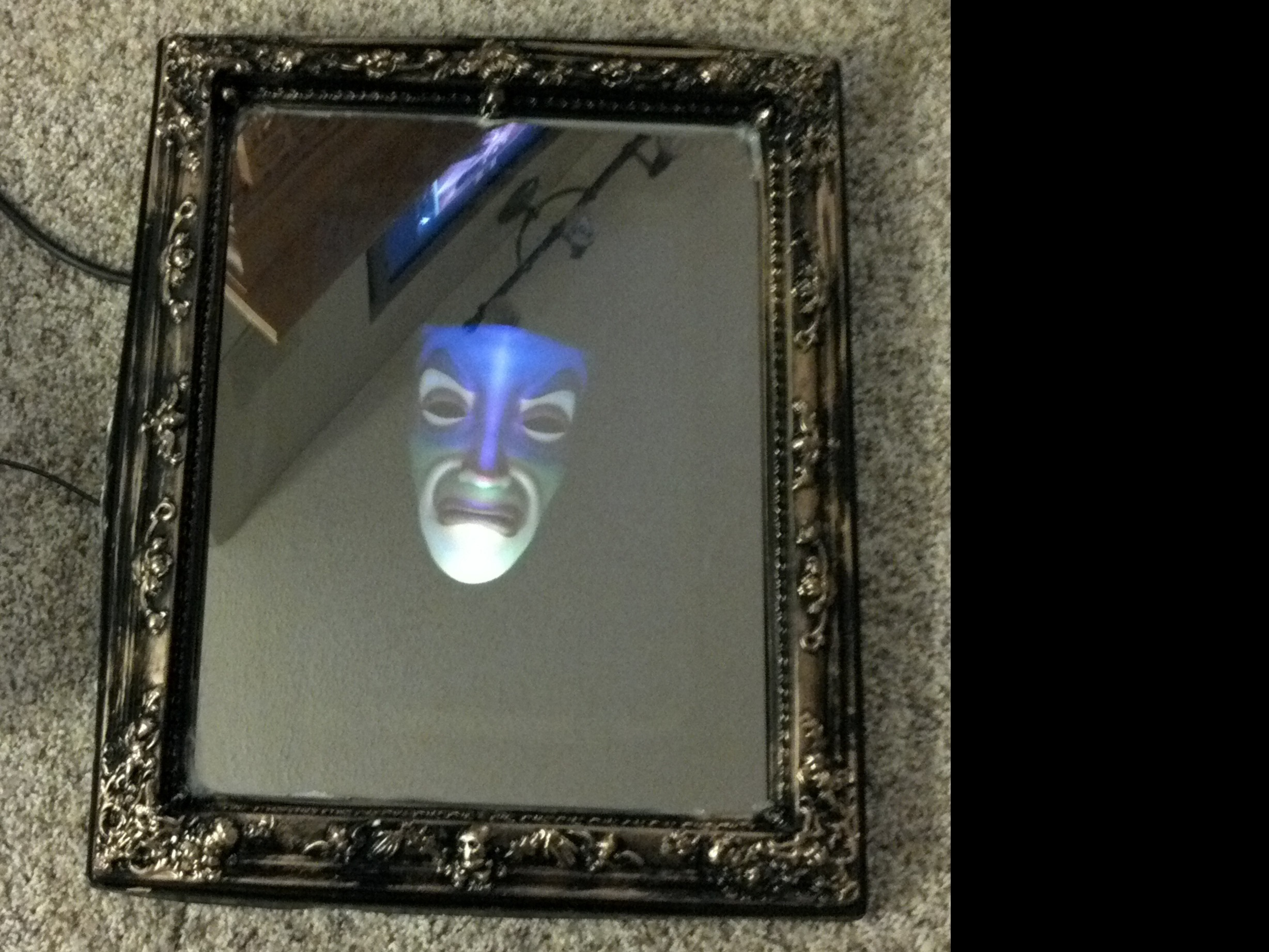 Magic Mirror Costume