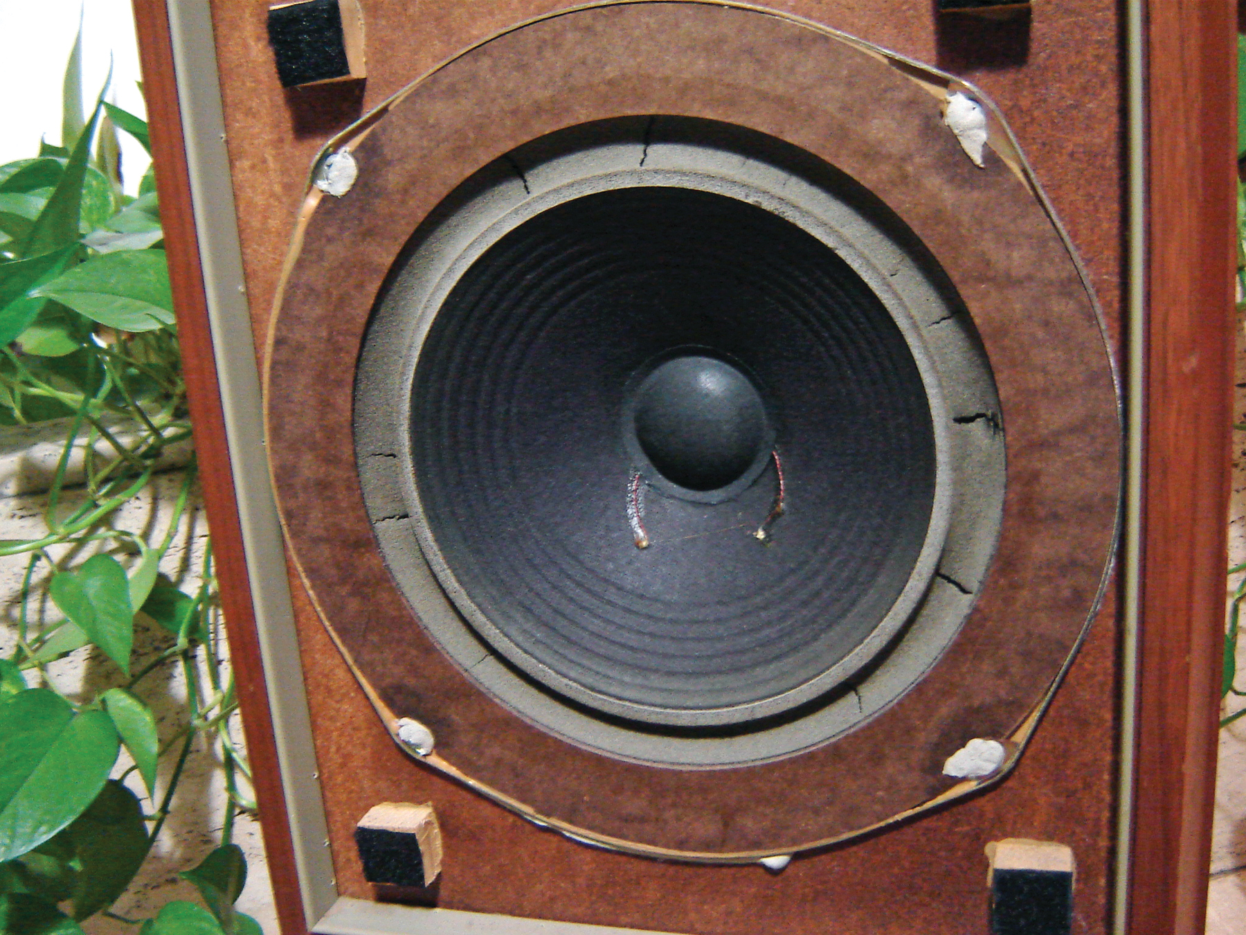 Econowave Speakers