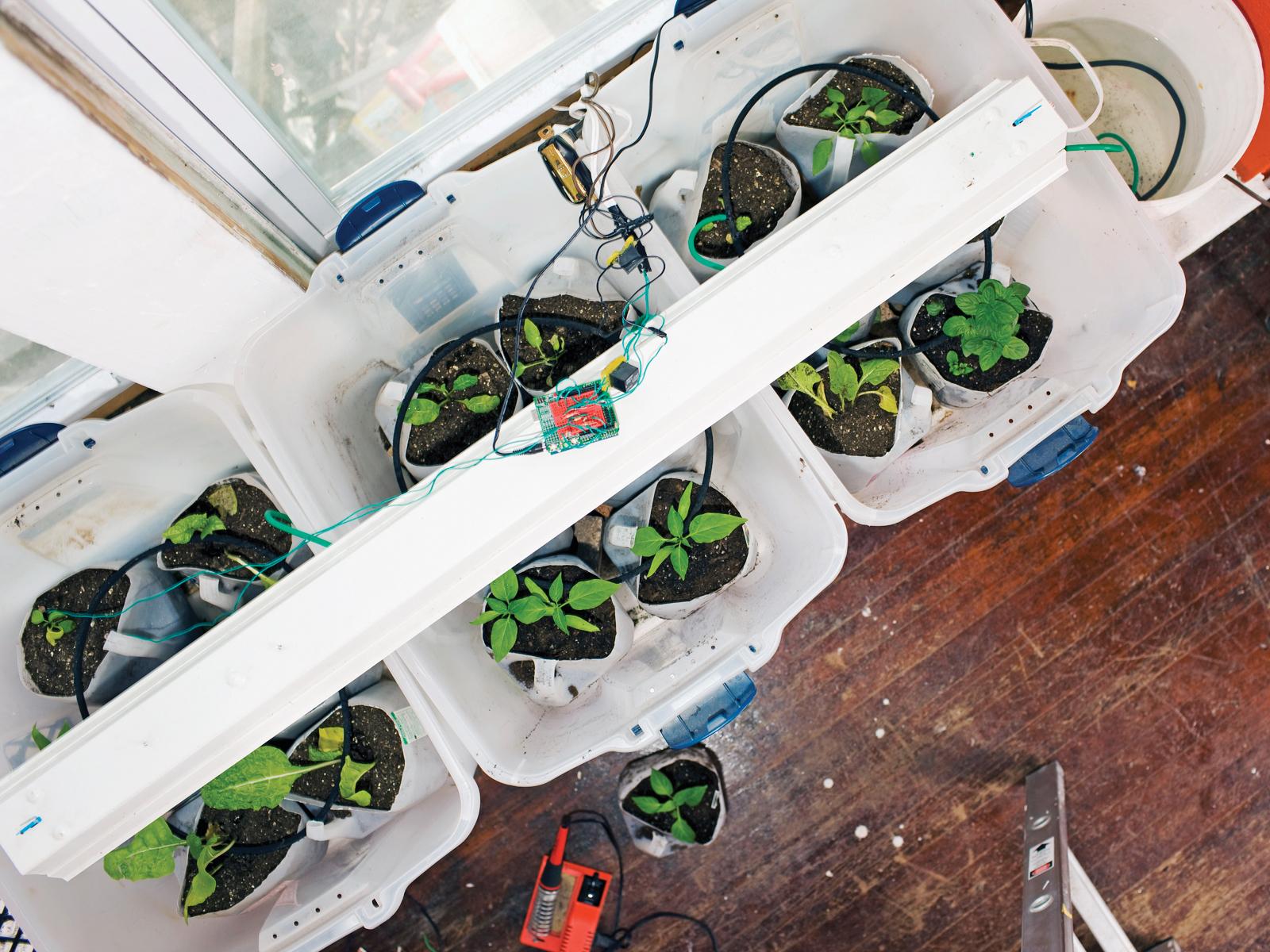 Garduino Geek Gardening