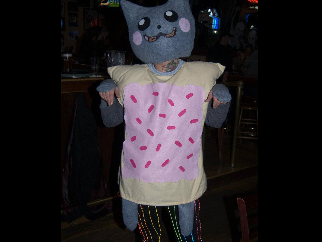 Nyan Cat Costume with ELRainbow