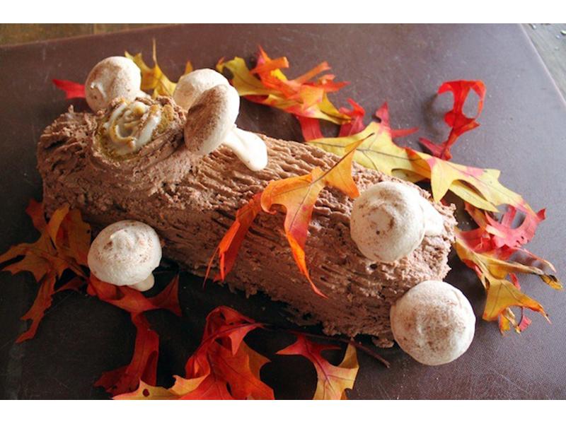 Pumpkin-Chocolate Bûche DeGratitude