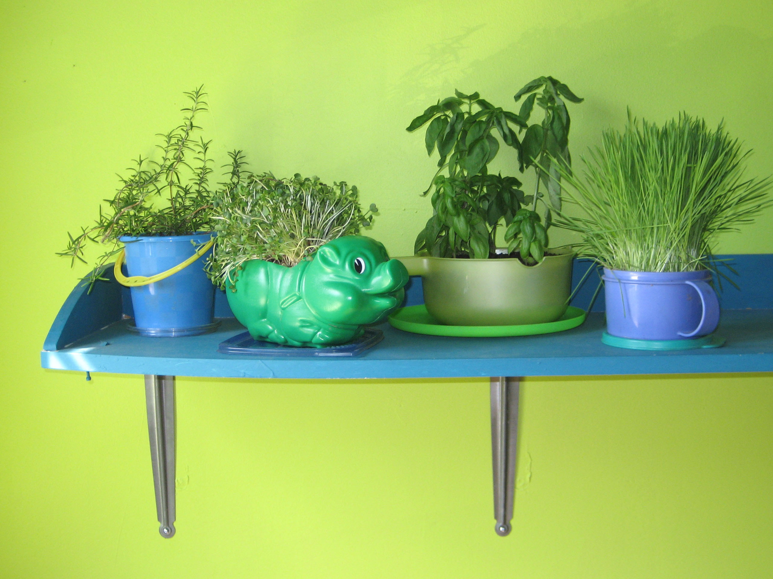 New Project: Plastic Herb Planters